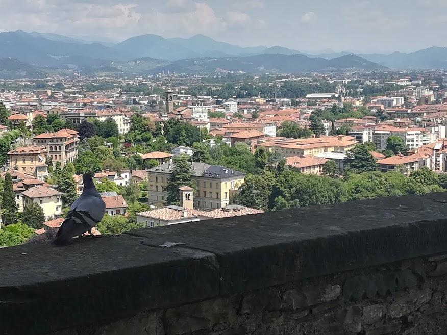 1 dzień w Bergamo – Włochy na wyciągnięcieręki